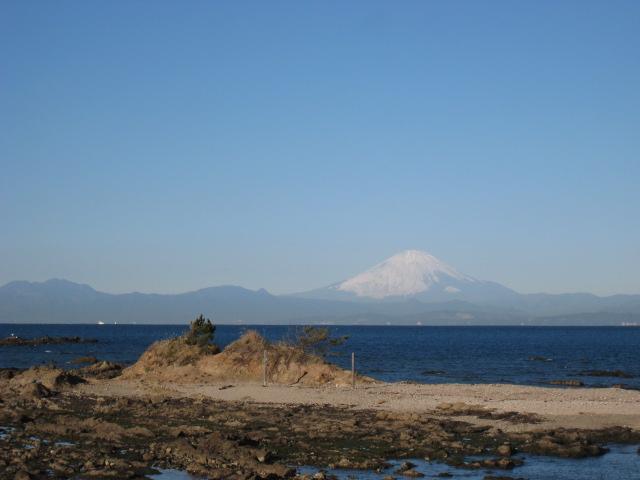 海のリトリート 富士山